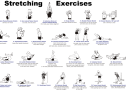 Stretch! for your Health
